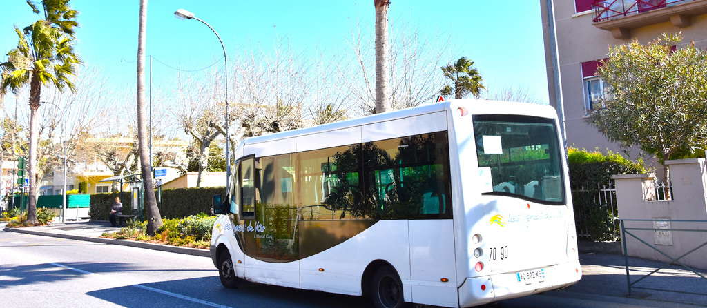 Bus colombus sanary